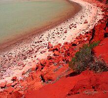 """""""Desert, meet Ocean..."""" Monkey Mia, Western Australia by wildimagenation"""