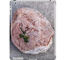 Seashore Treasures iPad Case/Skin
