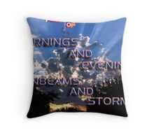 MORNINGS AND EVENINGS SUNBEAMS AND STORMS Throw Pillow