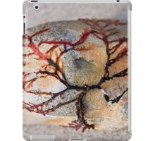 Clinging To The Rocks iPad Case/Skin
