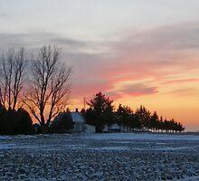 Winter Sky,s #2 by marchello