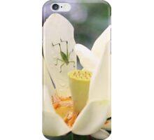Katydid on Lotus iPhone Case/Skin