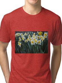 White Daffodils Tri-blend T-Shirt