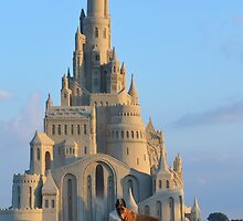 Dog and sand Castle by franceslewis