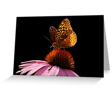 Fritillary Friend Greeting Card