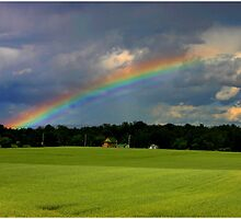 Rainbow Over Hayfield by Wayne King