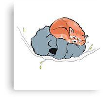 Red Panda + Koala Bear Sleeping Canvas Print