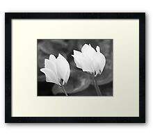 LIGHTNESS AND THE DARK Framed Print
