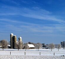 AMISH BARN IN A SNOWY SCENE by tfm446