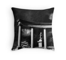 Standing Guard Over the Hills Throw Pillow