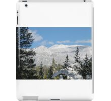 Snowy Freel Peak iPad Case/Skin
