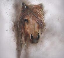 Horse equine animals,wildlife,wildlife art,nature by JackieFlaten
