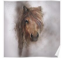 Horse equine animals,wildlife,wildlife art,nature Poster