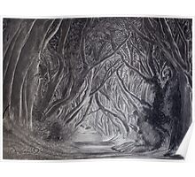 The Dark Hedges by Gary Rudisill Poster