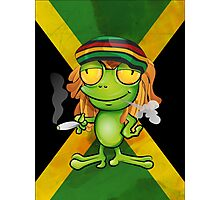 Rastafarian frog cartoon Photographic Print