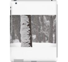 Snow-Flocked Jeffrey Pine Tree iPad Case/Skin