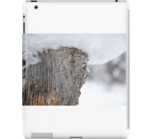 Snow Covered Tree Stump iPad Case/Skin