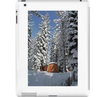 Snow-Flocked Trees and Shed iPad Case/Skin