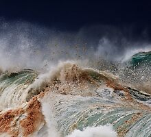 Winter Waves At Pipeline 14 by Alex Preiss