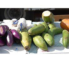 Variety of Veggies Photographic Print