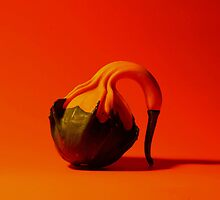 Gooseneck Gourd on Orange Background by mklue