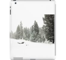 Snowstorm at Washoe Meadows State Park iPad Case/Skin