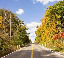 Autumn Road to Nowhere 2 by John Velocci