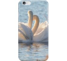 Swan Love iPhone Case/Skin
