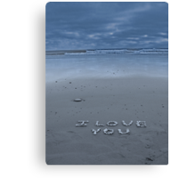 I Love You Canvas Print