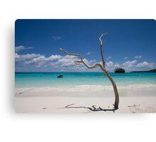 Paradise... Canvas Print