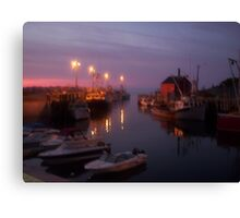 Shimmers at Night Canvas Print
