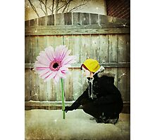 think spring! - part 2 Photographic Print