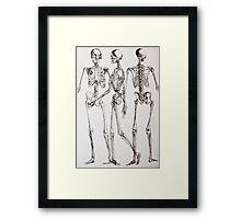 Skeleton Series Framed Print