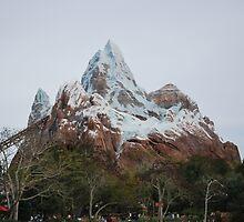 Expedition Everest - Close Shot by sarahshanely