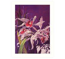 'Orchids' Art Print