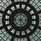 skylight by Rae Stanton