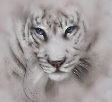Tigers white tigers tiger white tiger wildlife,wildlife art,nature, gifts, by JackieFlaten