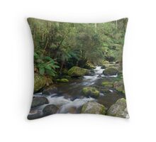 Tooronga Falls - Victoria Australia Throw Pillow