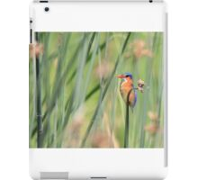 Kingfisher in Reeds iPad Case/Skin