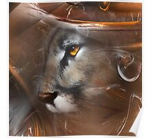 Cougar Puma panther animals,wildlife,wildlife art,nature Poster