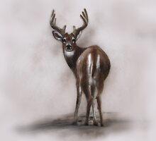 """Deer """"white tail deer"""" wildlife,wildlife art,nature, gifts, by JackieFlaten"""