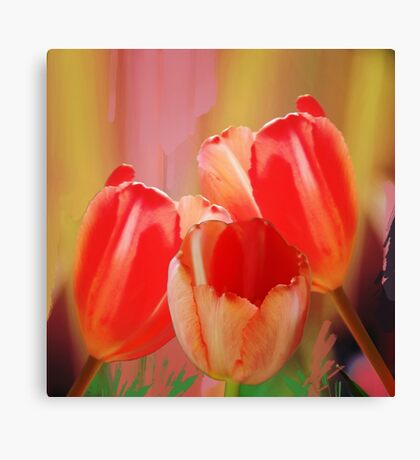 Three colourful tulips on an abstract background Canvas Print