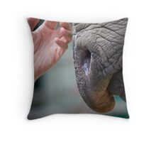 Tentative Touch Throw Pillow