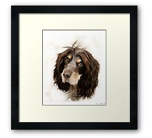 Mona. Two winters back. Framed Print