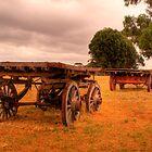 Old carts at Kaiwarra, Kangaroo Island by Elana Bailey