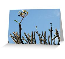 Raising above all Greeting Card