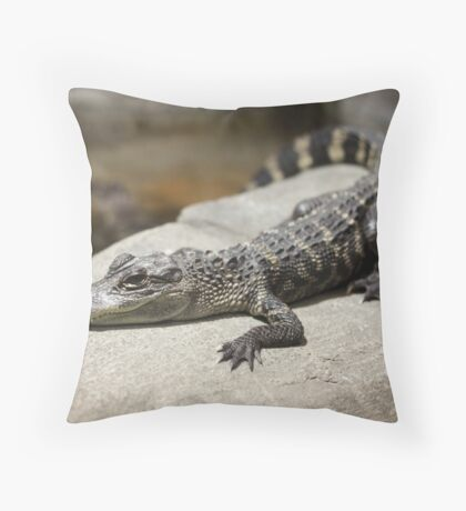 'Gator Log Throw Pillow