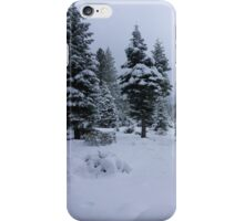 Winter in the Woods iPhone Case/Skin