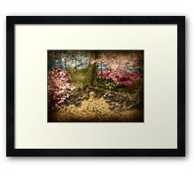 A Walk In The Mystical Woods - Infrared Series Framed Print