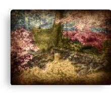 A Walk In The Mystical Woods - Infrared Series Canvas Print